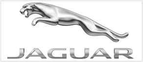 logo_del_bigo_jaguar